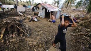 Des survivants du typhon Haiyan, dans la province de Samar.