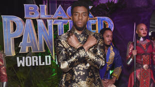 "Global smash hit film ""Black Panther"" starring the late Chadwick Boseman was adored by critics and audiences, becoming the first comic book movie to be nominated for best picture at the Oscars and grossing over $1 billion worldwide"