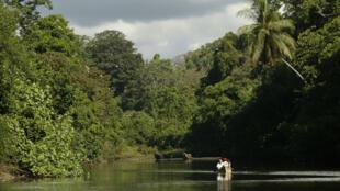 La rivière Sirena, qui traverse le parc national de Corcovado, au Costa Rica.