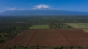 Kenya - KiliAvo - Avocats - 000_94Z8F7