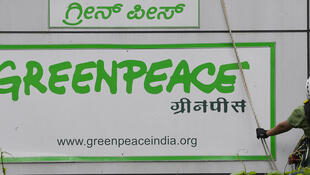 L'ONG Greenpeace est engagée dans une bataille féroce avec le gouvernement indien depuis l'arrivée de Narendra Modi à la tête du pays, l'année dernière.