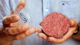 El profesor Mark Post muestra la primera hamburguesa sintética
