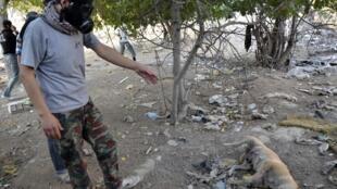 Un activiste, portant un masque à gaz, se tient non loin du cadavre d'un chien, le 22 août, dans un faubourg de Damas.