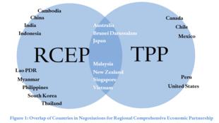 圖為TPP與RCEP網絡示意圖