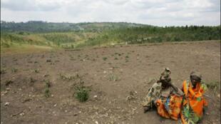 Le Burundi, l'un des pays les plus pauvres d'Afrique, s'efforce de redresser son secteur agricole.