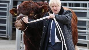 Boris Johnson, increasingly isolated in parliament, in Darnford, Scotland, 6 September 2019