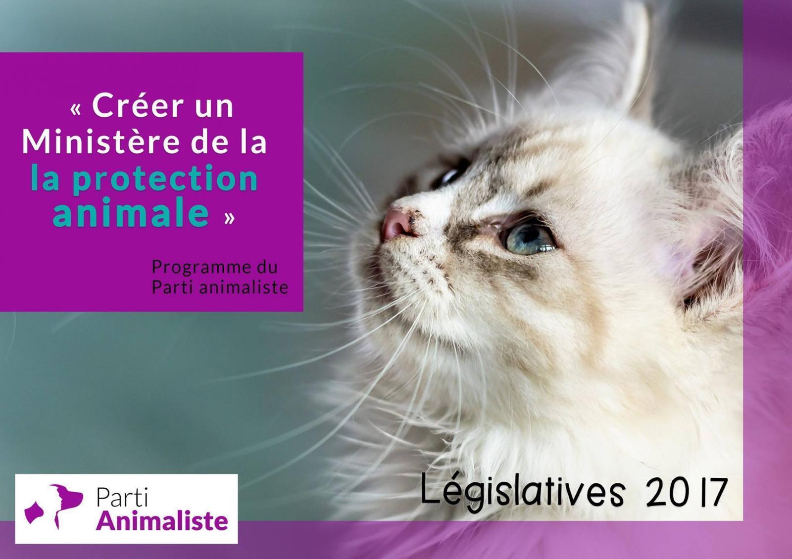 Кампания Партии защиты животных стала одной из самых ярких
