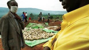 Charnier de Nyamirambo, près de Kigali, où 32 000 corps ont été exhumés en janvier 2000.
