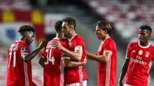SL Benfica - Desporto - Futebol - Lisboa - Football - Liga Portuguesa - Campeonato Português