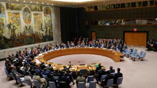 安理會14日就敘利亞問題緊急會議.