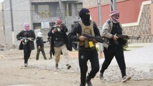 Combatientes tribales en las calles de Faluya, 5 de enero de 2014.