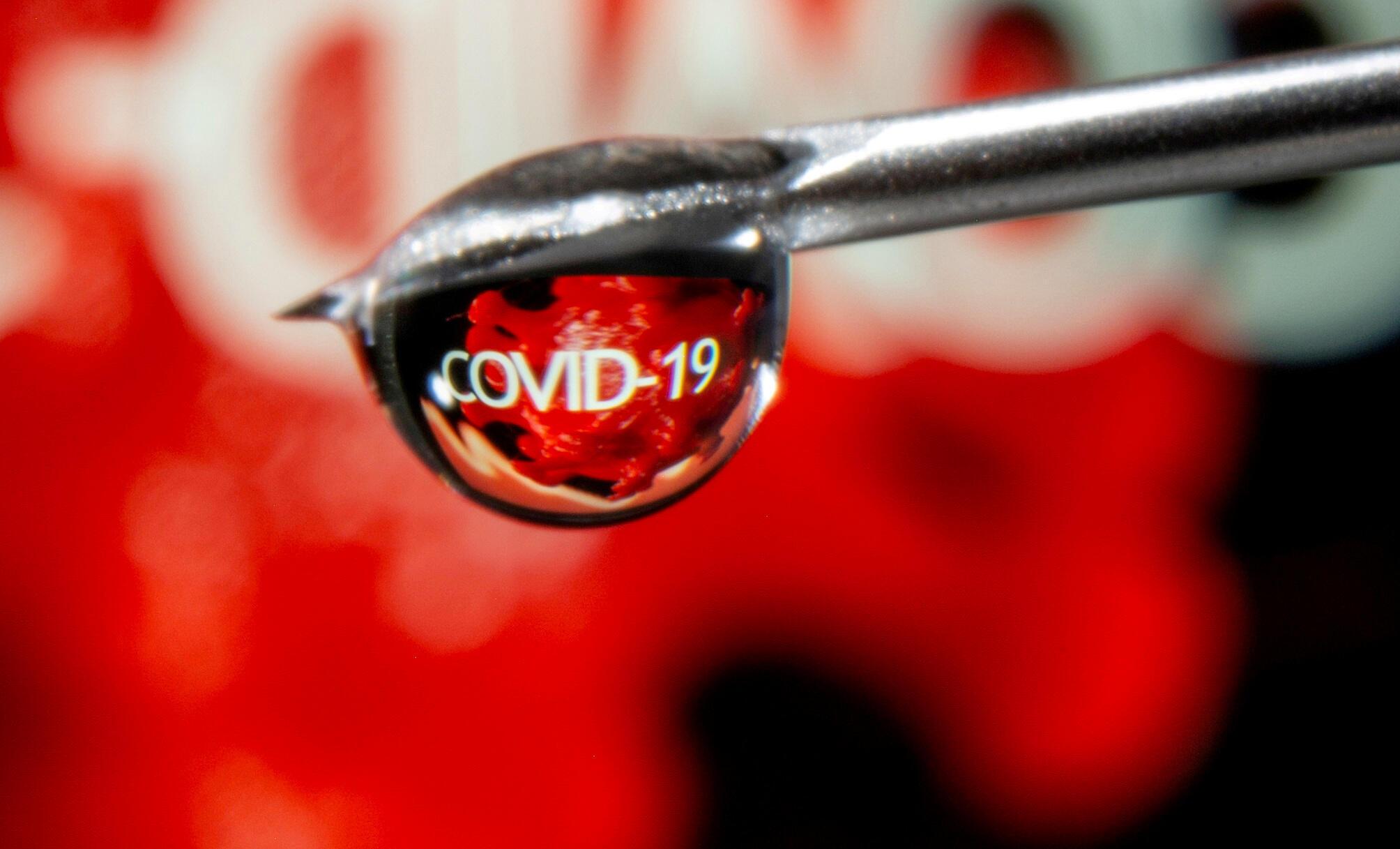 """Ảnh minh họa: Chữ """"Covid-19"""" phản chiếu trên một giọt thuốc từ đầu kim ống chích. Ảnh chụp ngày 09/11/2020."""