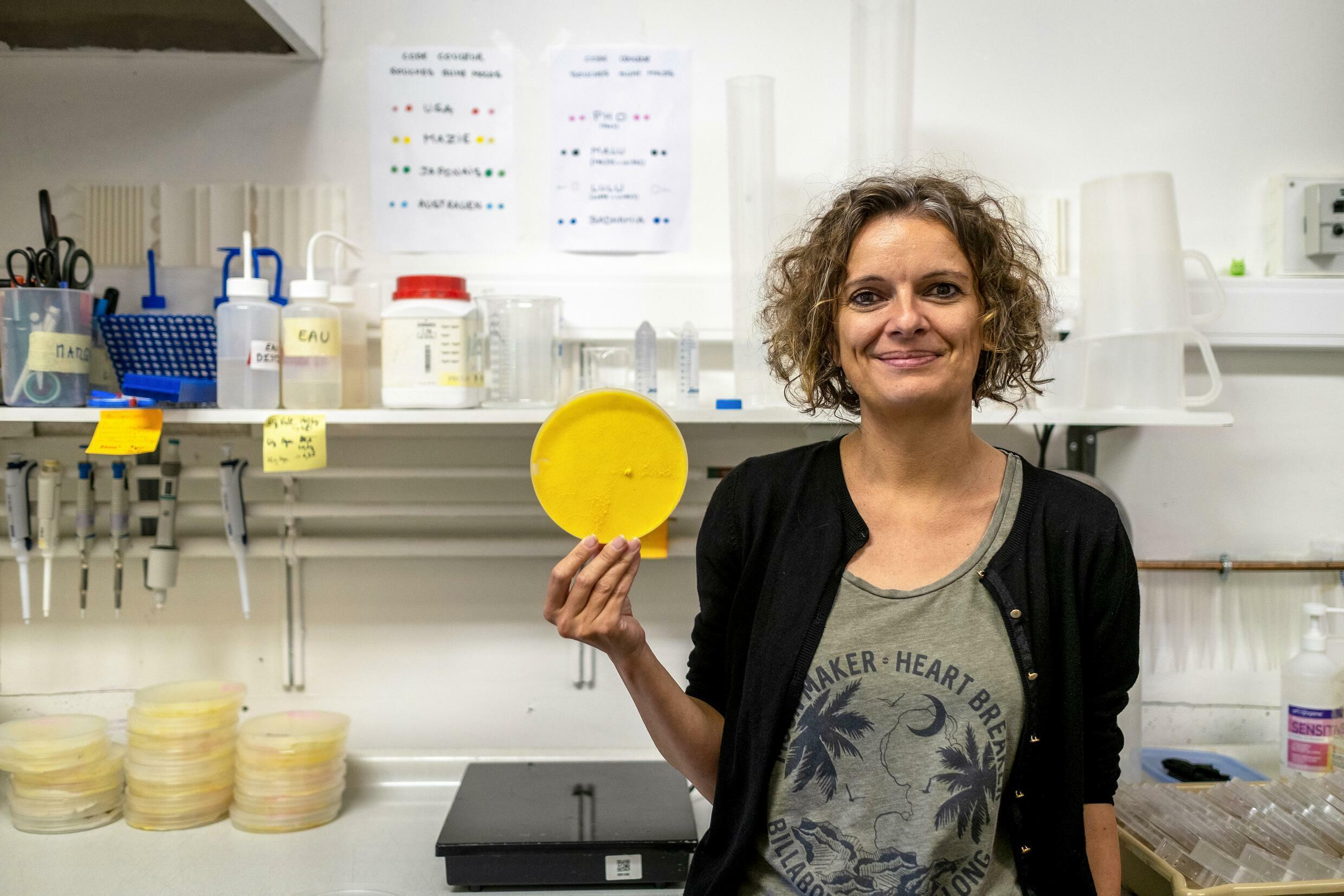 Audrey Dussutour, in her laboratory, in Toulouse, on May 31, 2019