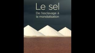 Couverture «Le sel, de l'esclavage à la mondialisation», de Jean-Claude Hocquet.