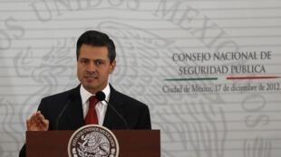 Enrique Peña Nieto este 17 de diciembre de 2012 en México.