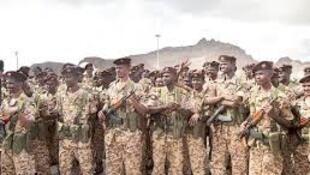 Sojin Sudan a Yemen
