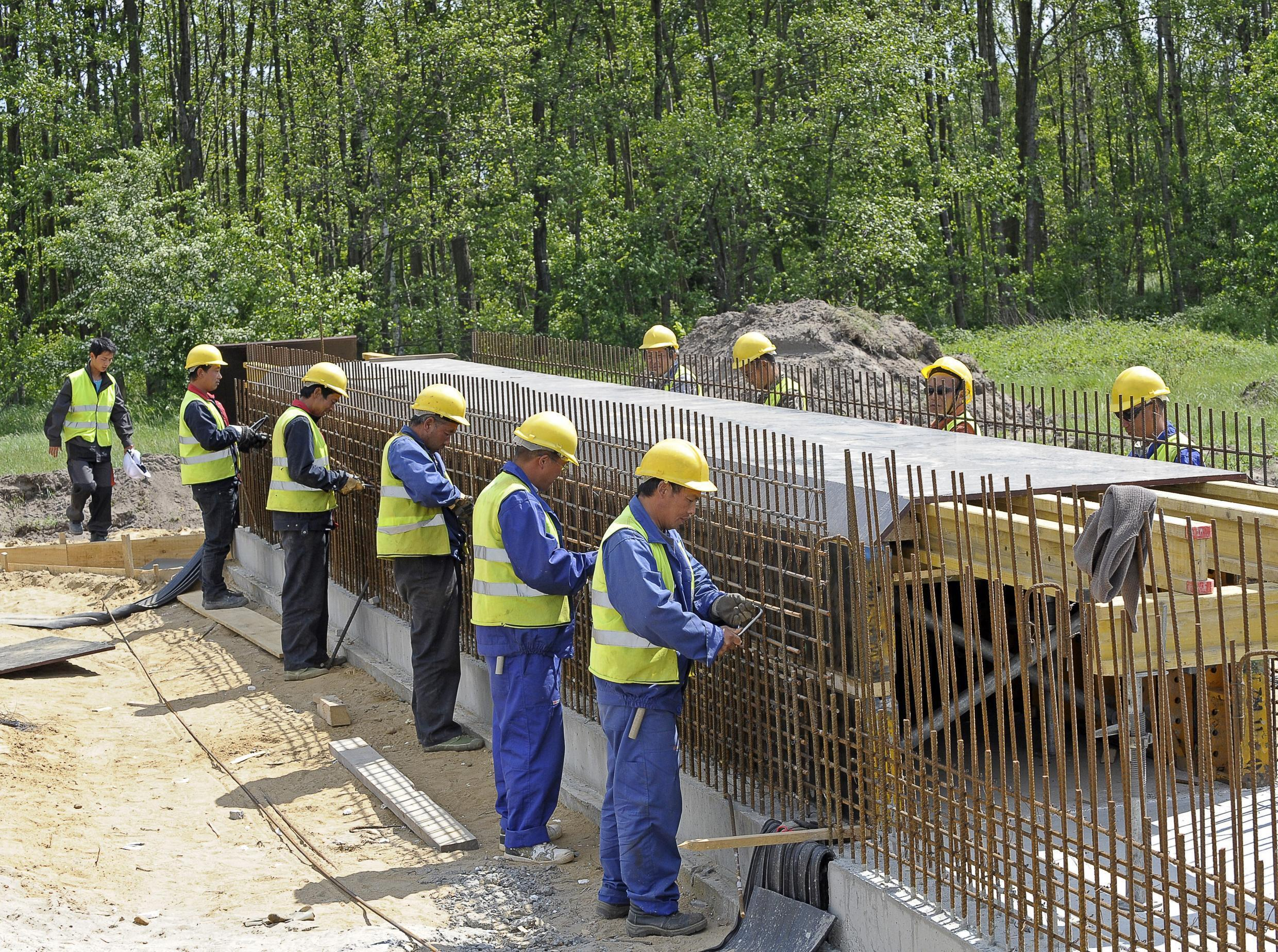 Chinese laborers working on part of the Warsaw-Berlin highway in Poland near Zyrardow (Central Poland)