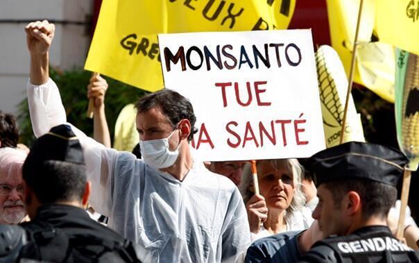 Экологи протестуют против продукции компании Монсанто перед Национальным собранием Франции (архив)