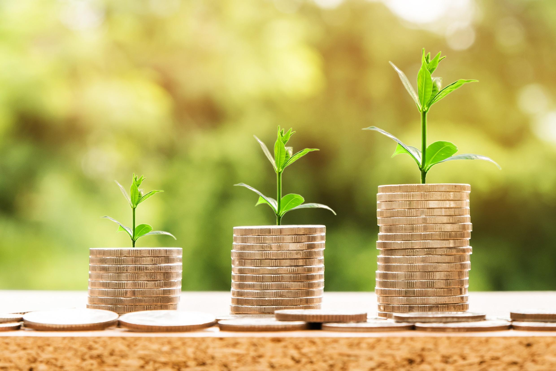 Investissement - Argent - Développement money-2696219