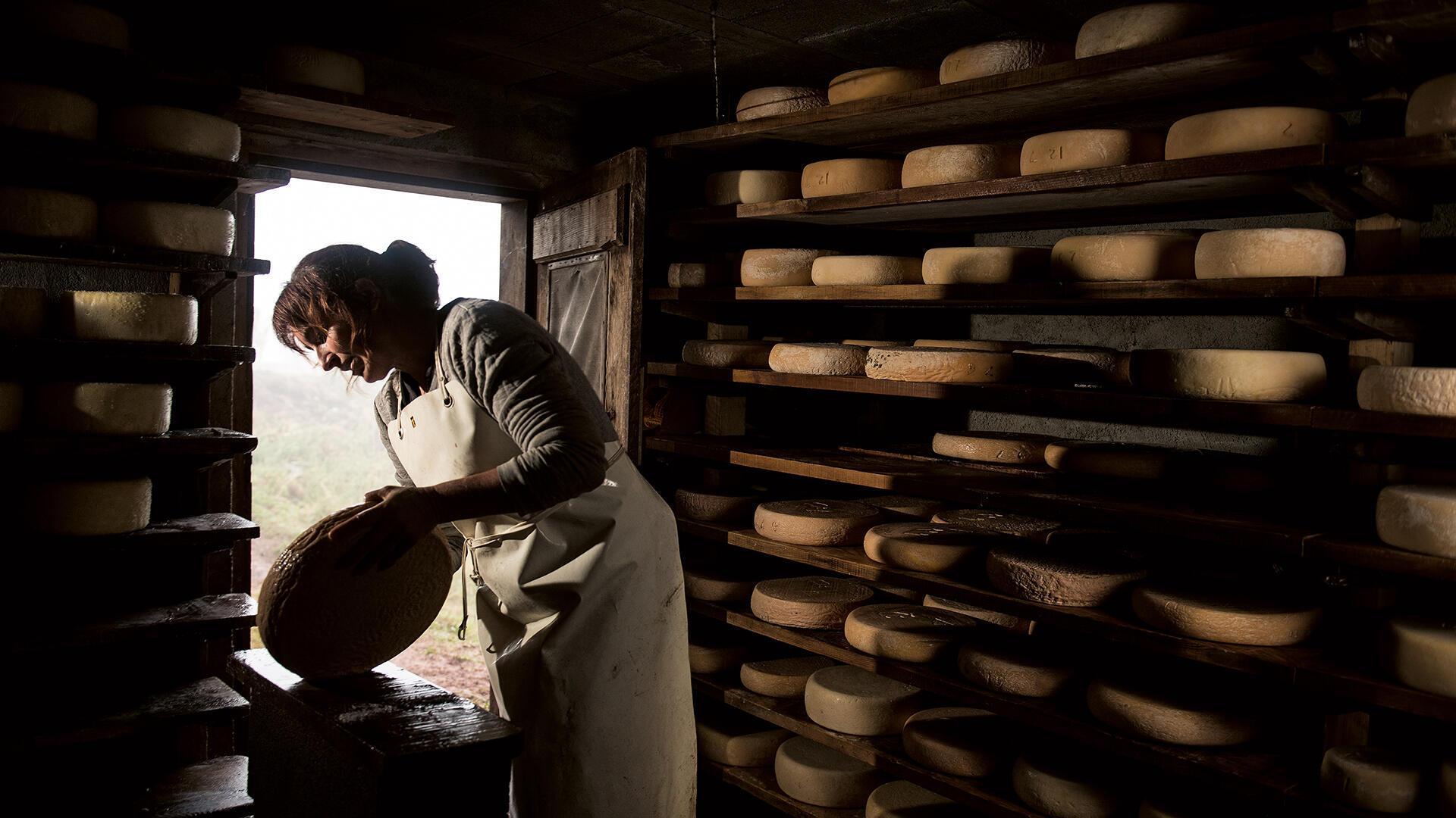 對奶酪情有獨鐘的法國人