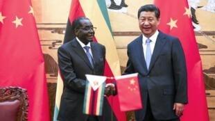 Le président du Zimbabwe Robert Mugabe et son homologue chinois Xi Jinping à Pékin, le 25 août 2014.