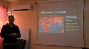 Maja Gudehus, vétérinaire, membre du groupe de spécialistes des pangolins de l'UICN et coordinatrice du Sangha Pangolin Project lors d'une conférence de presse sur ce sujet, le 15 février à Bangui, en Centrafrique.