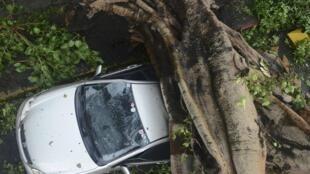 Fortes ventos provocados do tufão Rammasun provocaram muitos danos na parte leste das Filipinas.
