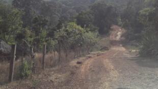 Ici, sur la route de Doucki. Les routes sont délabrées en Guinée.