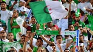 Des supporters algériens célèbrent la victoire de l'Algérie sur le Sénégal en finale de la Coupe d'Afrique des nations au Caire, le 19 juillet 2019.