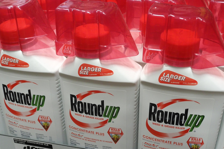 El pasado 4 de junio, la alemana Bayer cerró la compra de Monsanto, fabricante del herbicida RoundUp.