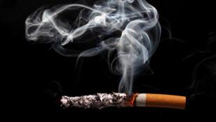 """Au Brésil, l'Agence nationale de vigilance sanitaire interdira en 2014 les substances qui adoucissent les cigarettes et """"augmentent l'action de la nicotine dans l'organisme"""", comme le menthol, la théobromine, la gamma-valérolactone et  l'ammoniac."""
