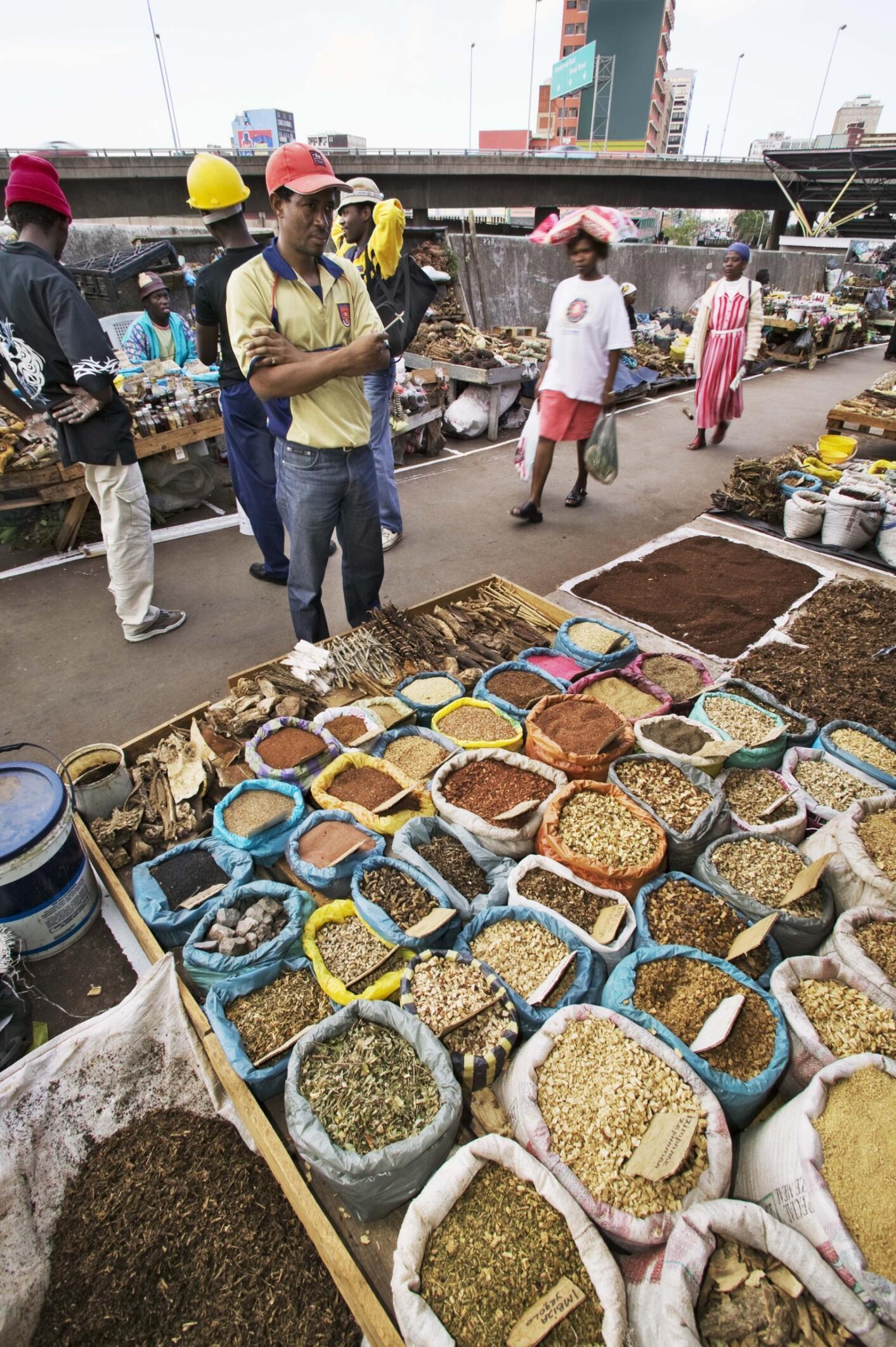 Un marché de plantes et racines médicinales en plein air, à Durban dans la province de Kwa-Zoulou Natal, en Afrique du Sud.