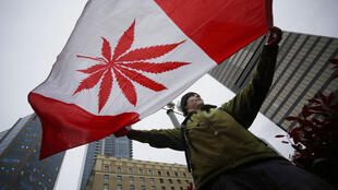 Drapeau pour la journée internationale du Cannabis en 2013, au Canada