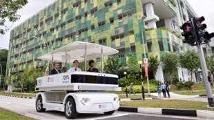 Xe buýt không người lái do Pháp sản xuất (dùng điện) chạy trên đường phố Singapore