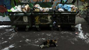 В России сжигание мусора признали переработкой. Экоактивисты считают, что это лишит Россию правильной системы переработки мусора на десятки лет.
