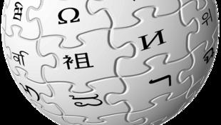 Plus de 80% des contributeurs de Wikipédia sont des hommes.