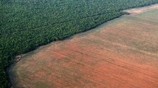 The green Amazon rainforest bordered by deforested land prepared for soya bean planting in Mato Grosso, western Brazil. Photo taken in 2015.