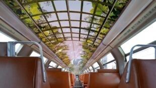 用凡尔赛宫的景色装饰的车厢