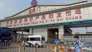 北京新发地市场