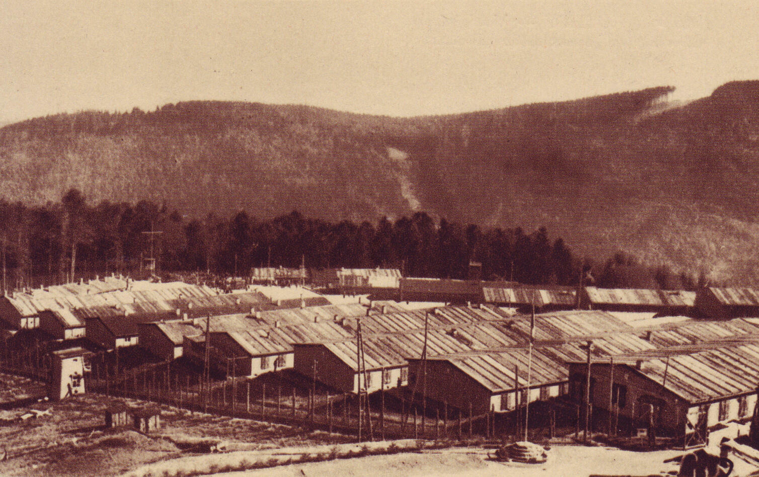 Dans le camp de Struthof.
