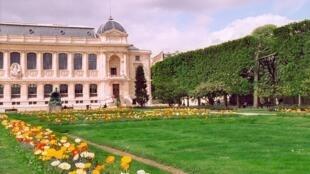 Le Jardin des Plantes, Paris
