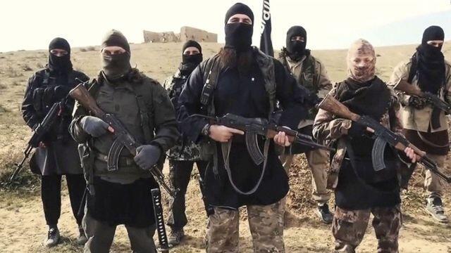 Nchini Iraq na Syria, kundi la Dola la Kiisilamu (IS) lina jumla ya wapiganaji 10,000 wanaofanya kazi, kulingana na ripoti ya Umoja wa Mataifa.