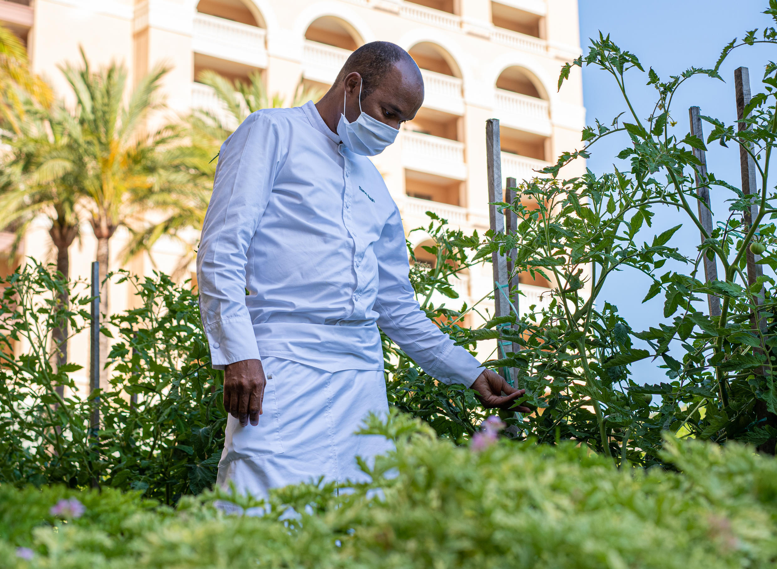French chef Marcel Ravin inspects the wares of his potager at the Monte Carlo Bay Hotel.