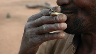 Cannabis (photo), cocaïne, héroïne, méthamphétamines... Pays de transit dans le trafic de drogue sous-régional, le Burkina Faso devient un territoire de consommation. (Image d'illustration)
