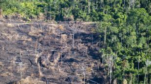 Ao final da temporada de fogo na Amazônia, o Greenpeace esteve em campo para registrar o estrago deixado pelas queimadas.