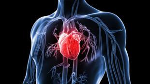 برای شنیدن توضیحات دکتر محمد عروجی، جراح و متخصص بیماریهای قلب و عروق و عضو جامعه جراحان فرانسه بر روی عکس کلیک کنید..