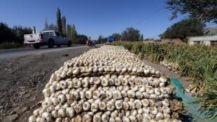 Cette photo prise le 18 septembre 2014 montre des tas d'ail frais en vente le long d'une route de campagne à la périphérie d'Urumqi, dans la région du Xinjiang, dans le nord-ouest de la Chine.