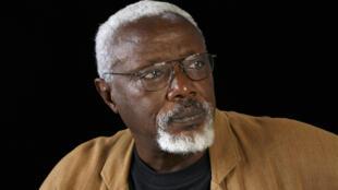 Le sculpteur sénégalais Ousmane Sow est décédé à l'âge de 81 ans.