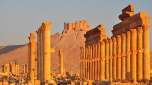 Palmyre, le plus beau site de Syrie, est menacé de destruction par le groupe Etat islamique.