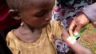Programa nacional de combate à desnutrição crónica das crianças em Moçambique.